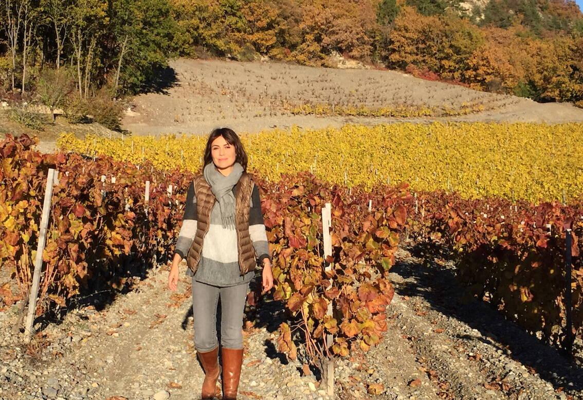 Des plateaux télé aux vignes des Hautes-Alpes