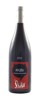 Anjou Chat You