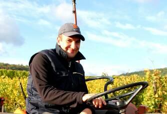 Travail dans les vignes au Domaine Freudenreich