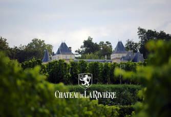 les vignes et le château de la rivière - la cave de Charlemagne