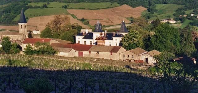 Château Emeringes