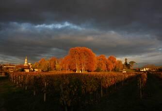 Coucher de soleil au Château Loupiac-Gaudiet