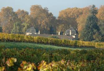 Au coeur du Château Loupiac-Gaudiet