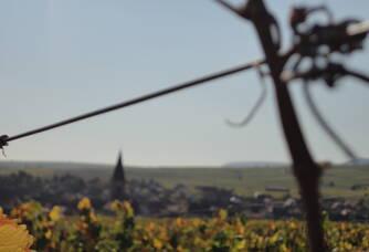 La vallée du vignoble des 2 lunes