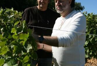 Au coeur des vignes du Domaine Duseigneur