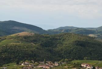 Vue du domaine Ducroux & Ducroux