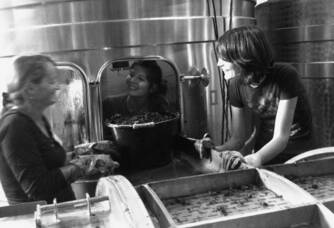 Laure en pleine vinification dans le chai du Domaine Colombo