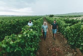 La famille Danglas dans les vignes