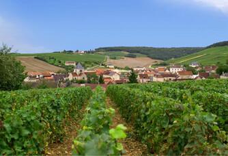Vue sur le village depuis les vignes du champagne Gremillet